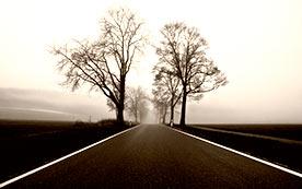 Основы безопасной езды в условиях тумана