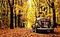 Подготовка автомобиля к осени – что важно знать?